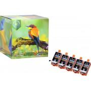 Ink Hero - 5 Colour - Inktcartridge / Alternatief voor de Canon CLI-36 PIXMA iP100 iP110 wb