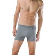 Schiesser Ondermode Stretch Shorts 2Pack Grijs / male