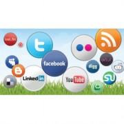 Gestión de Redes Sociales Básico