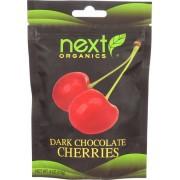 Next Organics Dark Chocolate Coconut - Organic - Case of 6 - 4 oz.