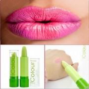 maquiagem Cosmetic Makeup Heterochrosis fruity Nutritious Moisturizer Waterproof Long-lasting Easy to Wear lipstick colo