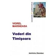 Vederi din Timisoara/Viorel Marineasa