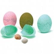 Set ousoare Discovery, sase oua in trei culori, 3 - 7 ani