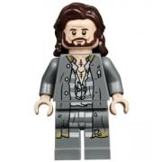 hp174 Minifigurina LEGO Harry Potter-Sirius Black hp174