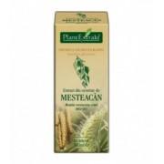 Extract din seminte de mesteacan, 50 ml