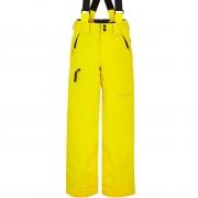 Spyder Boys Pants PROPULSION sun yellow