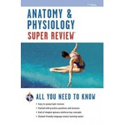 Anatomy & Physiology Super Review, Paperback/Jay M. Templin