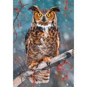 Puzzle Castorland - Great Hornet Owl, 500 piese