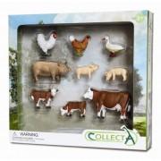 Set 9 Figurine Viata la Tara Collecta, 3 ani+