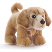 Plush company peluche garco golden retriever 15921