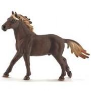 Schleich 13805 Mustanghingst
