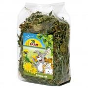 JR Farm hierbas agrestes - Flores del prado 300 g