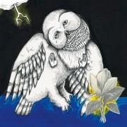 Magnolia Electric Co. [LP] - VINYL