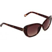 Fossil Oval Sunglasses(Brown)