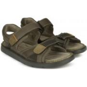 Clarks Men Brown Sports Sandals