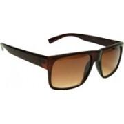 Mangal Brothers Retro Square Sunglasses(Brown)