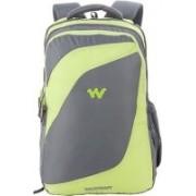 Wildcraft 11303 32 L Laptop Backpack(Green, Grey)