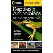National Geographic Pocket Guide to Reptiles and Amphibians of North America, Paperback