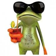 TOOGOO(R) ToogooR Funny 3D Frog Peep Car Stickers Truck Window Decal Graphics Sticker Ju