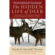 The Hidden Life of Deer: Lessons from the Natural World, Paperback/Elizabeth Marshall Thomas