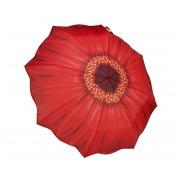 Blooming Brollies Umbrelă pliabilă complet automată femei Galleria Red Daisy Folding GFFRDN