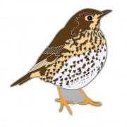 Birdlife International Speldje zanglijster