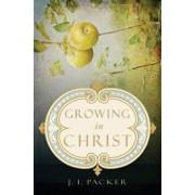 Growing in Christ, Paperback/J. I. Packer