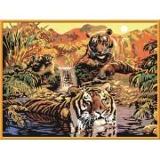 Раскрашивание по номерам «Тигры»