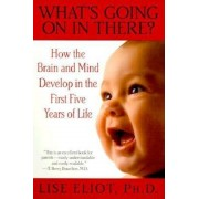 What's Going on in There?: How the Brain and Mind Develop in the First Five Years of Life, Paperback