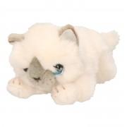 Keel Toys Birmaanse pluche witte katten/poes/poezen knuffel 25 cm