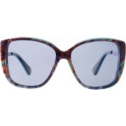 Slaughter & Fox Over-sized Sunglasses(Blue)