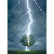 Пъзел Eurographics от 1000 части – Светкавица поразява дърво