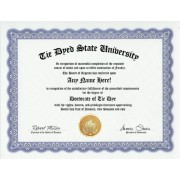 Tie Dye Tie Dyed Degree: Custom Gag Diploma Tye Dye Doctorate Certificate (Funny Customized Joke Gift Novelty Item)