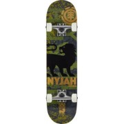 Element Nyjah Huston Compleet Skateboard (Texture)