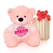 4 feet big pink teddy bear wearing Best Sister T-shirt