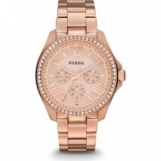 RL-02055-01: FOSSIL CECILE - AM4483