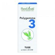 PlantExtrakt Polygemma Nr. 3 Tuse