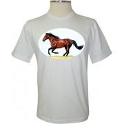 Camiseta Cavalo - Coleção Animais