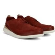 Clarks Pitman Free Brick Sneakers For Men(Maroon)