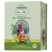SALUS Pharma GmbH Herbaria 6er Tee Eva Aschenbrenner