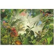 Fototapet natura - Jungla tropicala