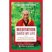 Meditation Saved My Life: A Tibetan Lama and the Healing Power of the Mind, Paperback/Bstan-Dzin-Rgya