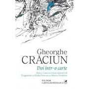 Doi intr-o carte (fara a-l mai socoti pe autorul ei). Fragmente cu Radu Petrescu si Mircea Nedelciu/Gheorghe Craciun