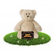 Happy Horse Verjaardag knuffel beer 17 cm met gratis verjaardagskaart