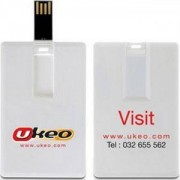 Флаш памет 8Gb USB BU/SD-25F/без лого/, с карта, бяла - RAM-HAN-SD25F-8