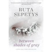 Between Shades of Gray, Paperback