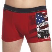 America Red fiú boxeralsó