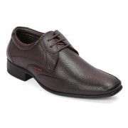 Red Chief Brown Low Ankle Leather Derby Shoe (RC3543 003)