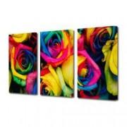 Tablou Canvas Premium Abstract Multicolor Trandafiri Cu Petale Colorate Decoratiuni Moderne pentru Casa 3 x 70 x 100 cm