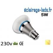 Ampoule led E27 queen 5W blanc chaud